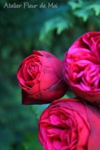 Atelier Fleur de Mai fleurs5 ok